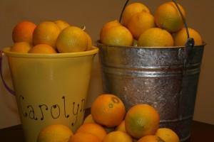 Lemons from tree